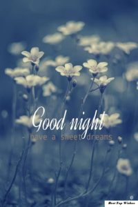 Funny Good Night Wishes to Girlfriend