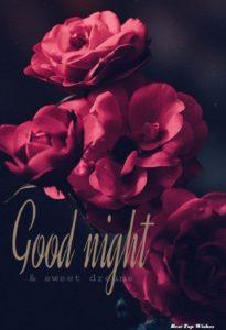 Good Night wishes love
