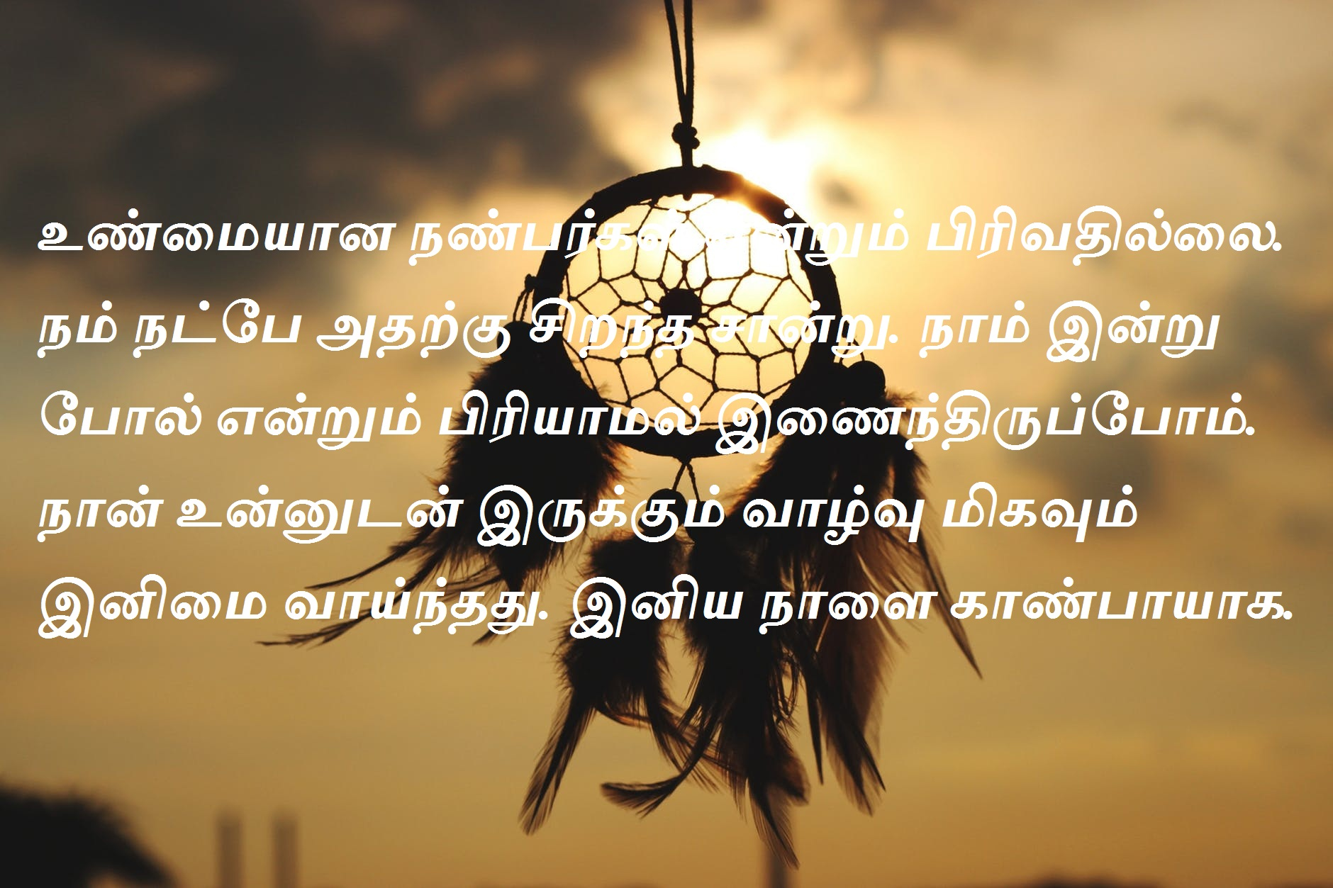 Happy Birthday Wishes in Tamil Language
