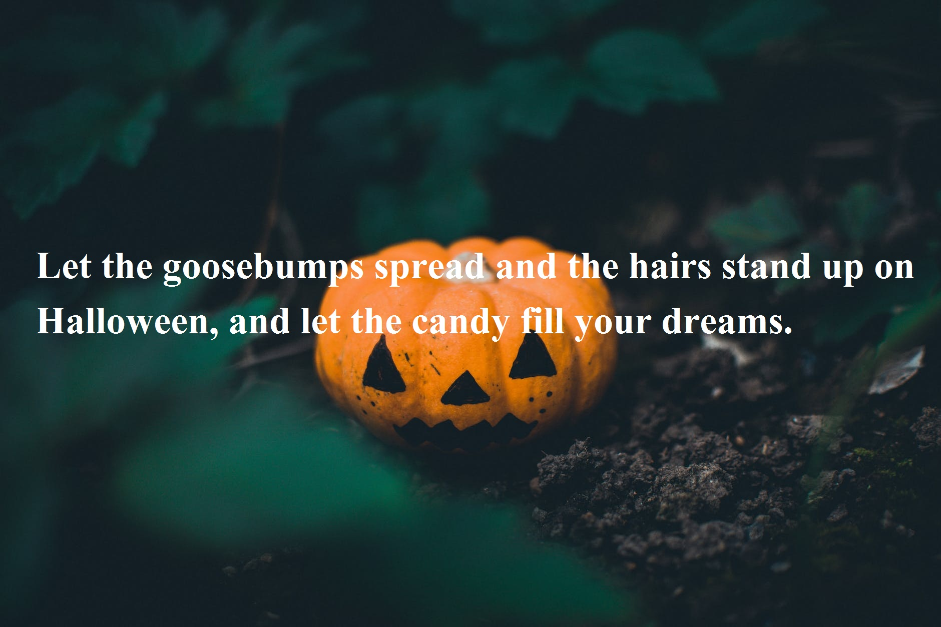 Happy Halloween Day Wishes Messages