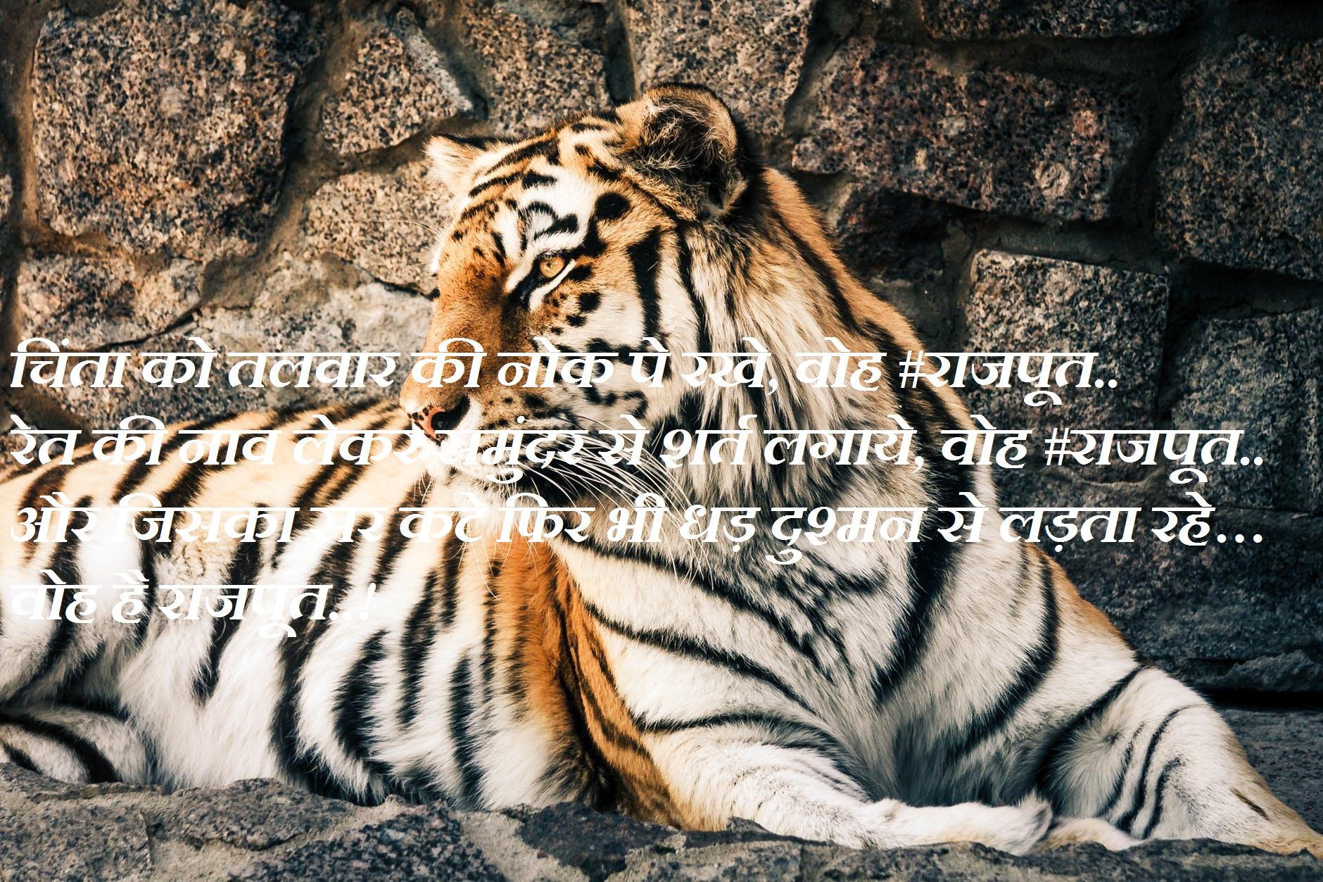 best rajput quotes